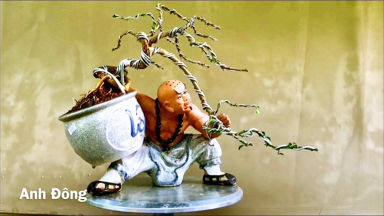 Cách uốn cây bonsai trên chậu tượng P 2