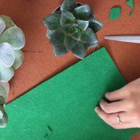 Cắt vải nỉ tạo ra các lá cây sen đá