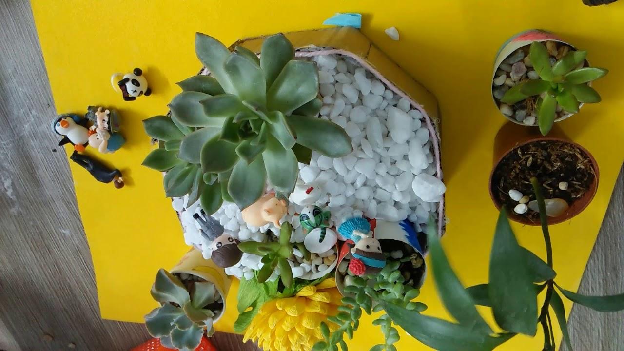 Gợi ý sáng tạo trong decor các chậu tiểu cảnh sen đá và xương rồng trong nhà