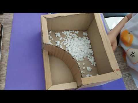 Giới thiệu các mẫu tiểu cảnh sen đá mà chị em nên biết