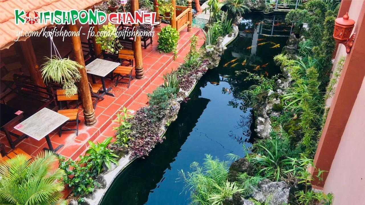 Ngạc nhiên với hồ cá Koi ngoài trời đẹp gần 200 khối | Beautiful koi fish aquarium | Koi Fish Pond