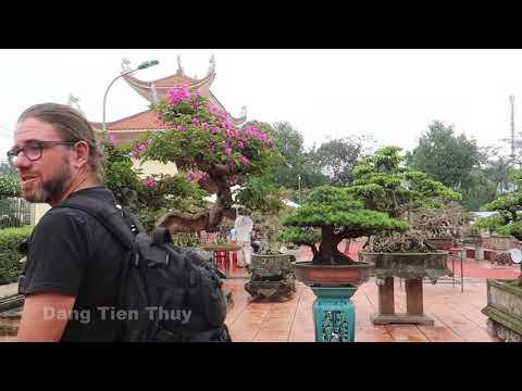 Siêu cây cảnh đẹp được triển lãm tại Văn giang HY Thuy garden