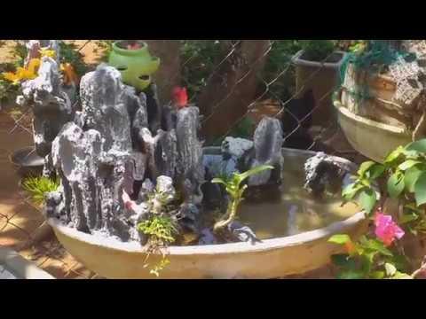 TIỂU CẢNH SÂN VƯỜN MINI, AI CŨNG CŨNG TỰ LÀM ĐƯỢC ! (garden miniatures)