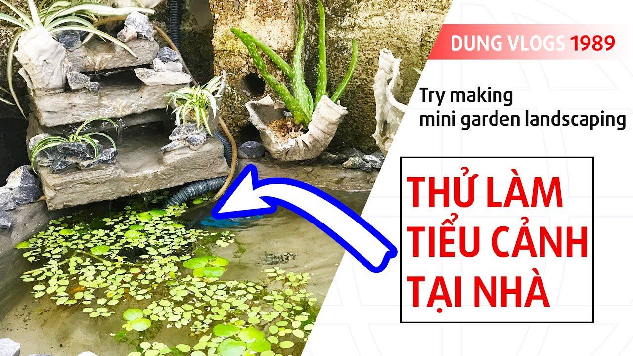 Thử Làm Tiểu Cảnh Sân Vườn | Try making mini garden landscaping | Garden Miniatures ✔️DungVlogs 1989