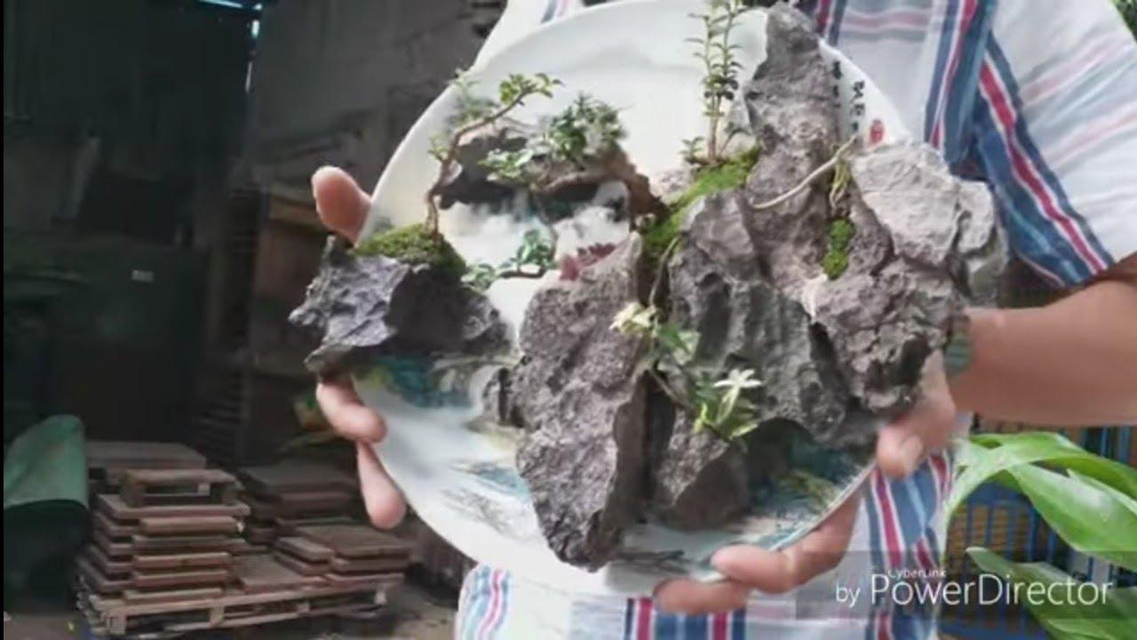 Tiểu cảnh trên đĩa thủy mạc. Phiên bản 2.vlog nguyễn cách dán đá làm tiểu cảnh mini