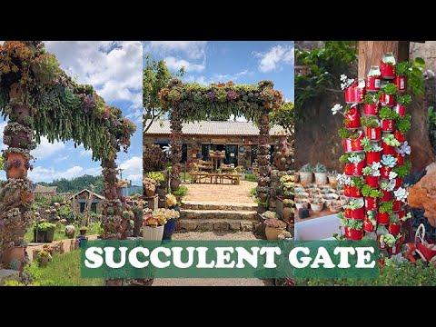 Amazing succulent gate| Cổng nhà bằng sen đá tuyệt đẹp| 多肉植物| 다육이들 | Suculentas