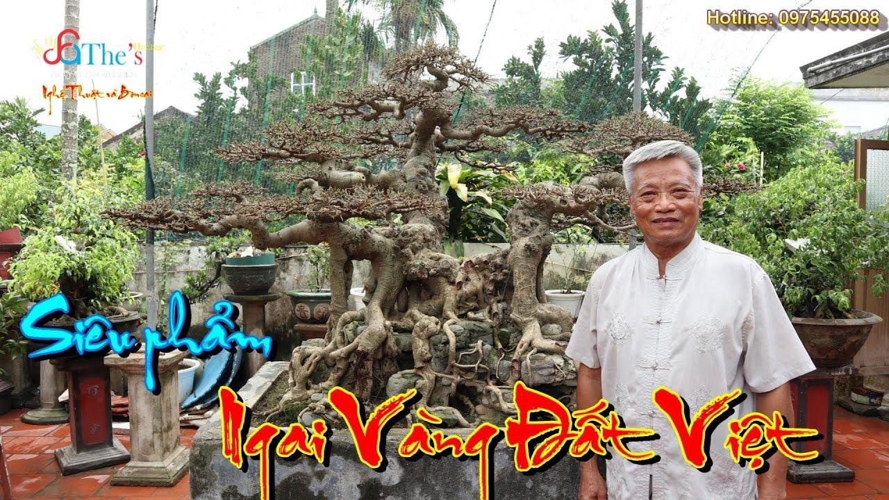 Xem siêu phẩm Ngai Vàng Đất Việt nổi tiếng Festival 2019 được Nghệ nhân Nam Lê lột xác như thế nào