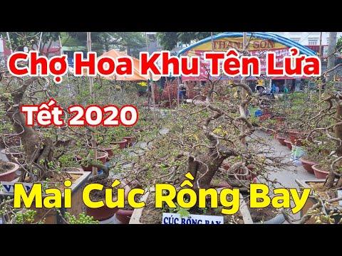 Chợ Hoa Xuân 2020 🥰 Mai Bình Định Tại Khu Tên Lửa