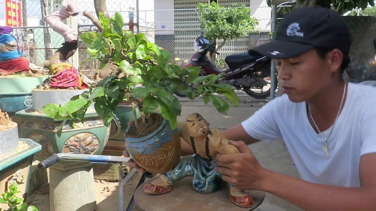 Lô Mai bonsai phối tượng mini để bàn (đã bán)