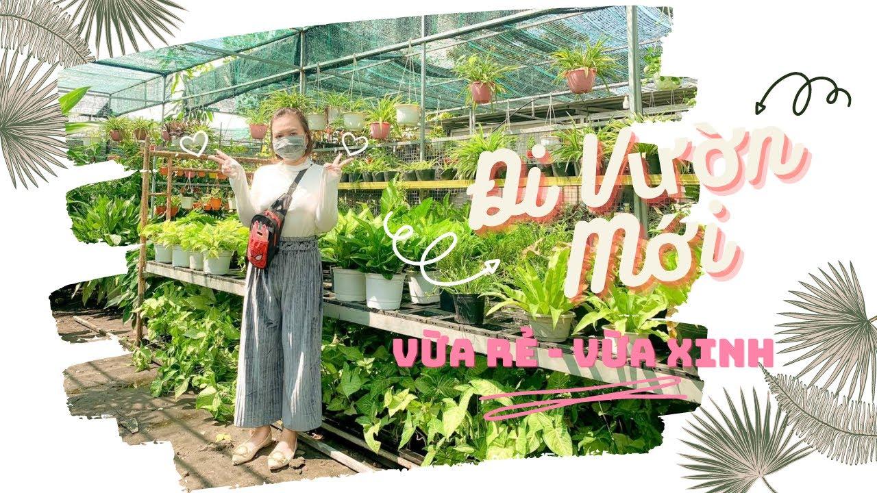 Ngày Nắng Đẹp Dạo Vườn Ba Xanh,Tự Sang Chậu Cho Cây | Narak Check-in