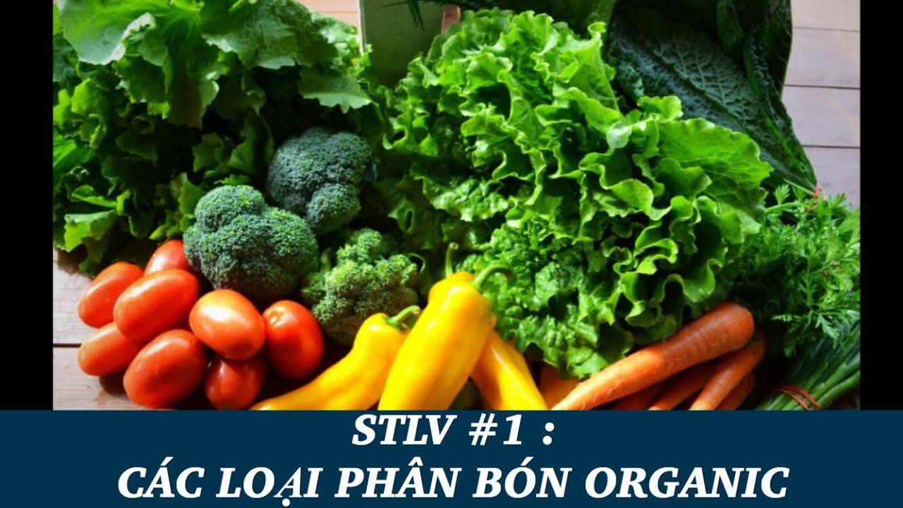 SỔ TAY LÀM VƯỜN TẬP 1 - CÁCH BÓN PHÂN CHO RAU SẠCH - Organic fertilizer in my garden PART 1