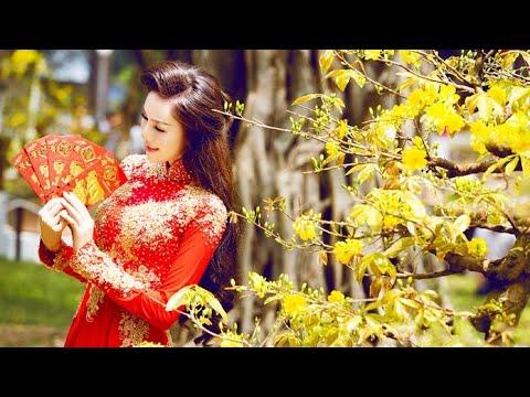 Tác phẩm mai bonsai đẹp tại hội thi mai vàng An Nhơn Bình Định