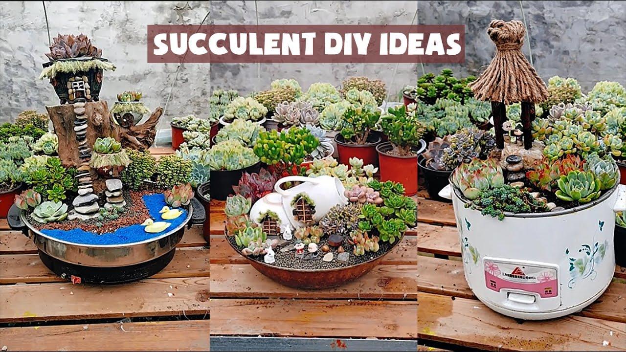 15 Succulent DIY Ideas| 15 ý tưởng trang trí sen đá| 多肉植物| 다육이들 | Suculentas