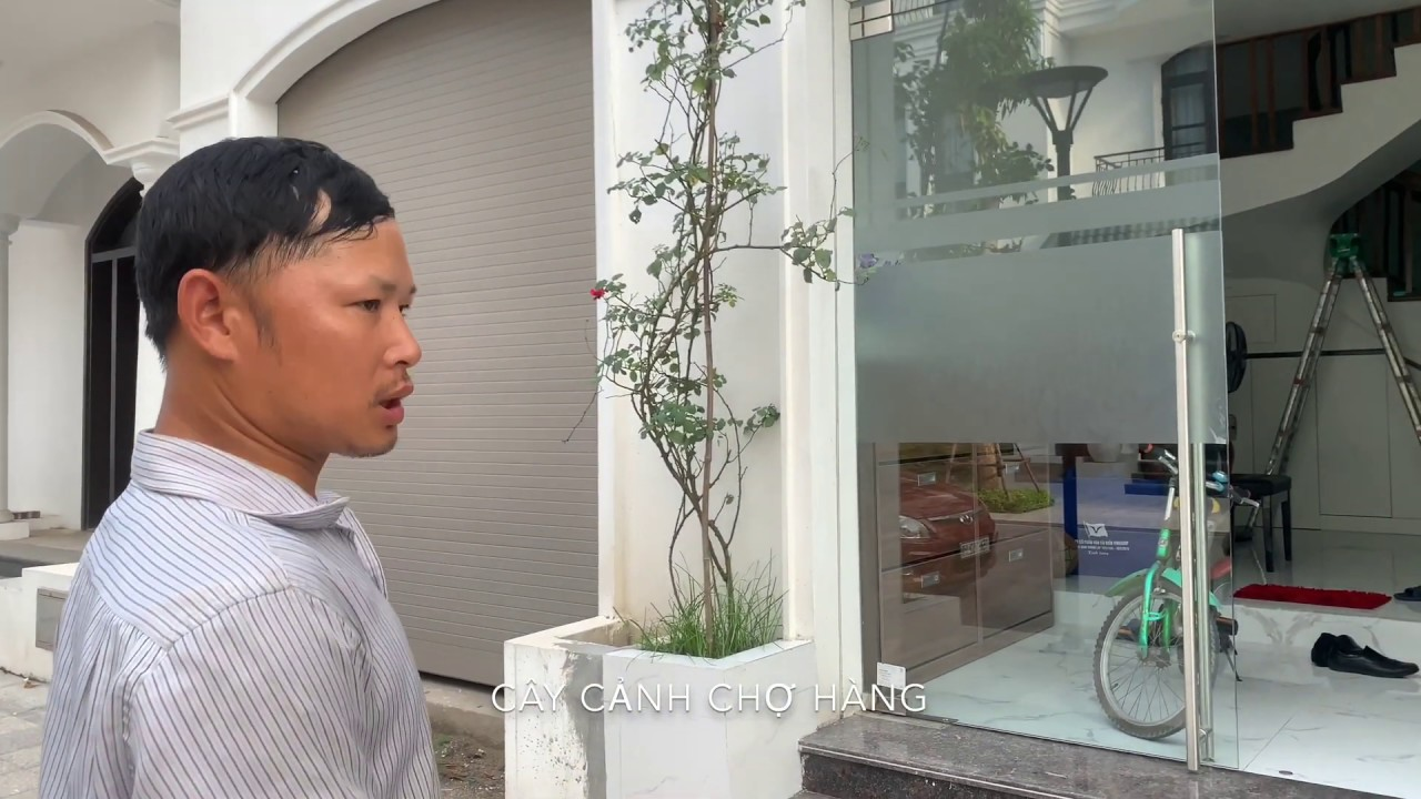24. Hồng cổ Hải Phòng (Phần 2) Cây trồng bị bệnh tại nhà khách hàng - Cây cảnh Chợ Hàng