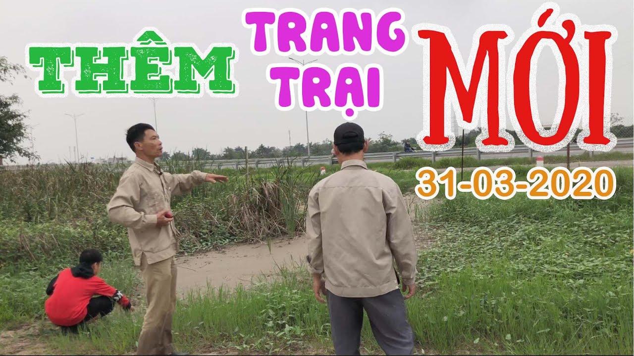 354. Ký Hợp Đồng Thuê Thêm Trang Trại Mới Từ 01-04-2020 | CÂY CẢNH CHỢ HÀNG Hải Phòng