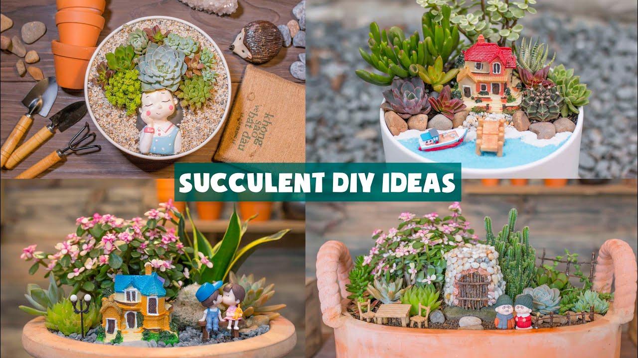 7 Succulent DIY Ideas| 7 Ý tưởng trang trí sen đá cực đẹp| 多肉植物| 다육이들 | Suculentas