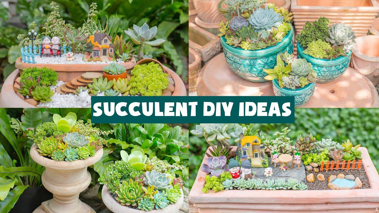 7 Succulent DIY Ideas| Tổng hợp 7 ý tưởng trang trí sen đá| 多肉植物| 다육이들 | Suculentas