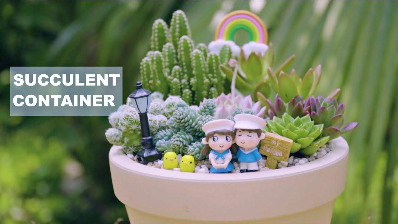 How to make a succulent container - Short film Ep.02| Làm một chậu tiểu cảnh sen đá | 多肉植物 | 다육이들