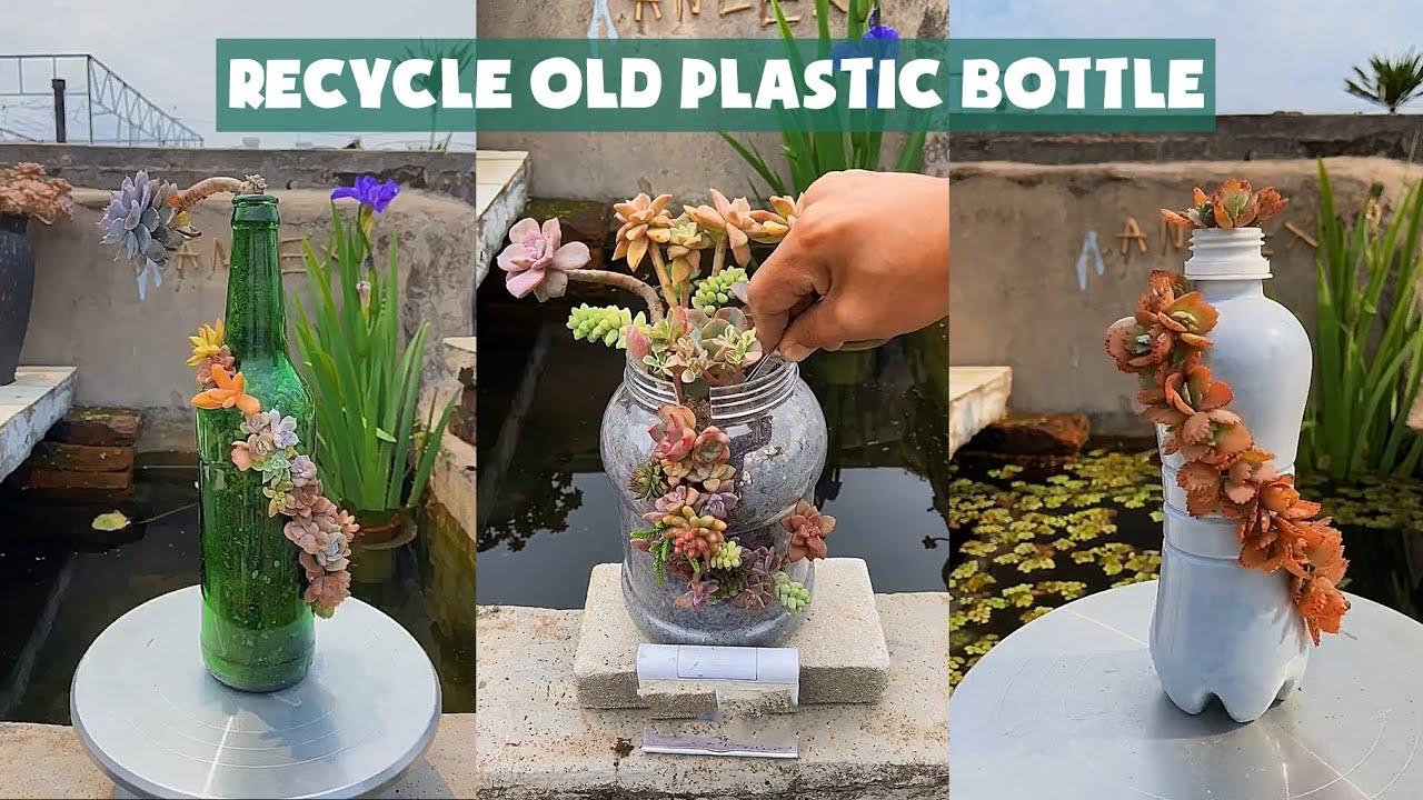 Recycle Old Plastic Bottle into Succulent Pot| Tái chế chai nhựa trồng sen đá| 다육이들 | Suculentas