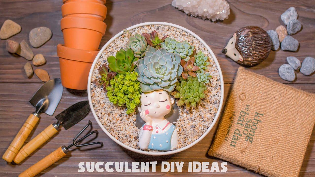Succulent DIY Ideas for Dreamy girl| Ý tưởng trang trí sen đá tuyệt đẹp| 多肉植物| 다육이들 | Suculentas