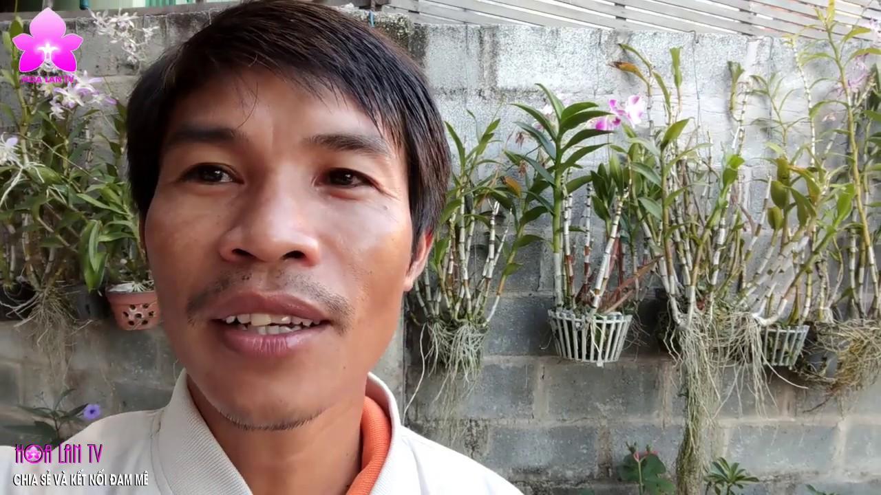 """Vườn Lan ''Bờ Rào"""" ĐỘC ĐÁO ăn NẮNG 100% giữa trời Phan Thiết @HOALAN 4U"""