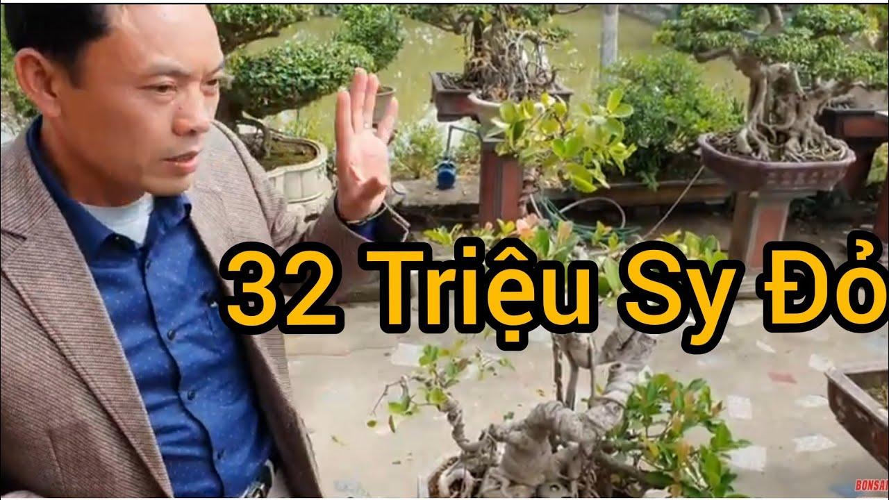 (BSCH 733) Si Đỏ anh Đệ báo giá 32 triệu,  anh Thắng Yên Mô trả 15 triệu.