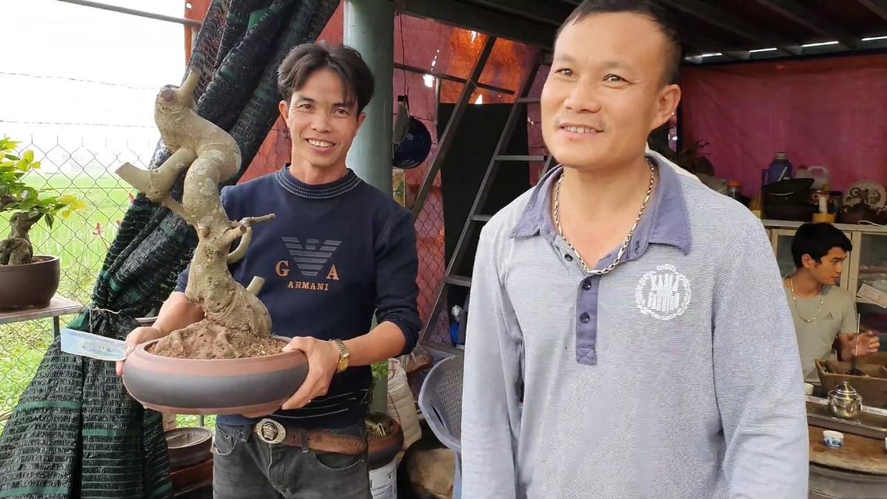 Tám Còi giao dịch phôi sanh 1 triệu tại nhà vườn Minh Thuận - Hải Hậu.