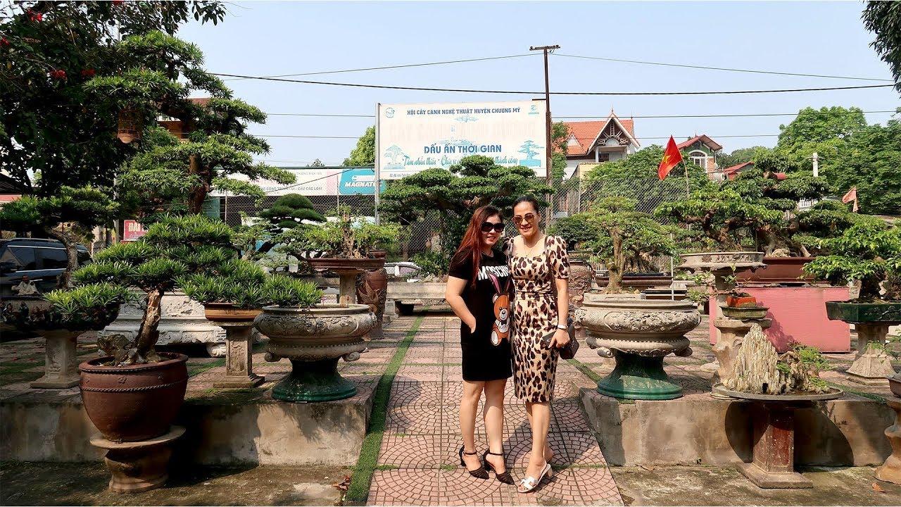 Thăm vườn Bonsai nhà anh Minh Dưỡng, Chương Mỹ, Hà Nội