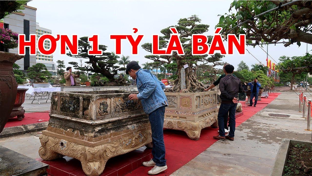 Thực hư đôi bể cổ trị giá hơn 1 tỷ tại triển lãm Bắc Giang