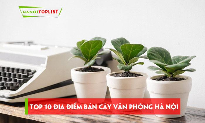 top-10-dia-chi-ban-cay-van-phong-ha-noi-uy-tin-chat-luong-nhat