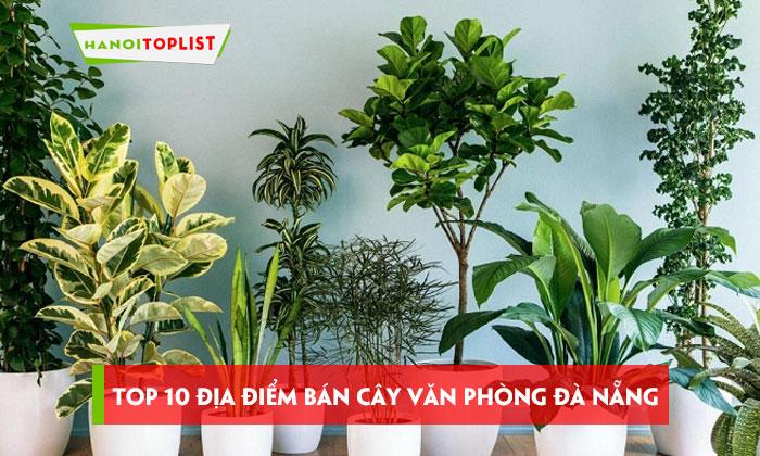 top-10-dia-diem-chuyen-ban-cay-van-phong-da-nang-chat-luong-nhat