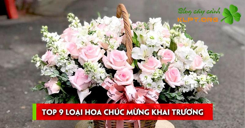 top-9-loai-hoa-chuc-mung-khai-truong-1