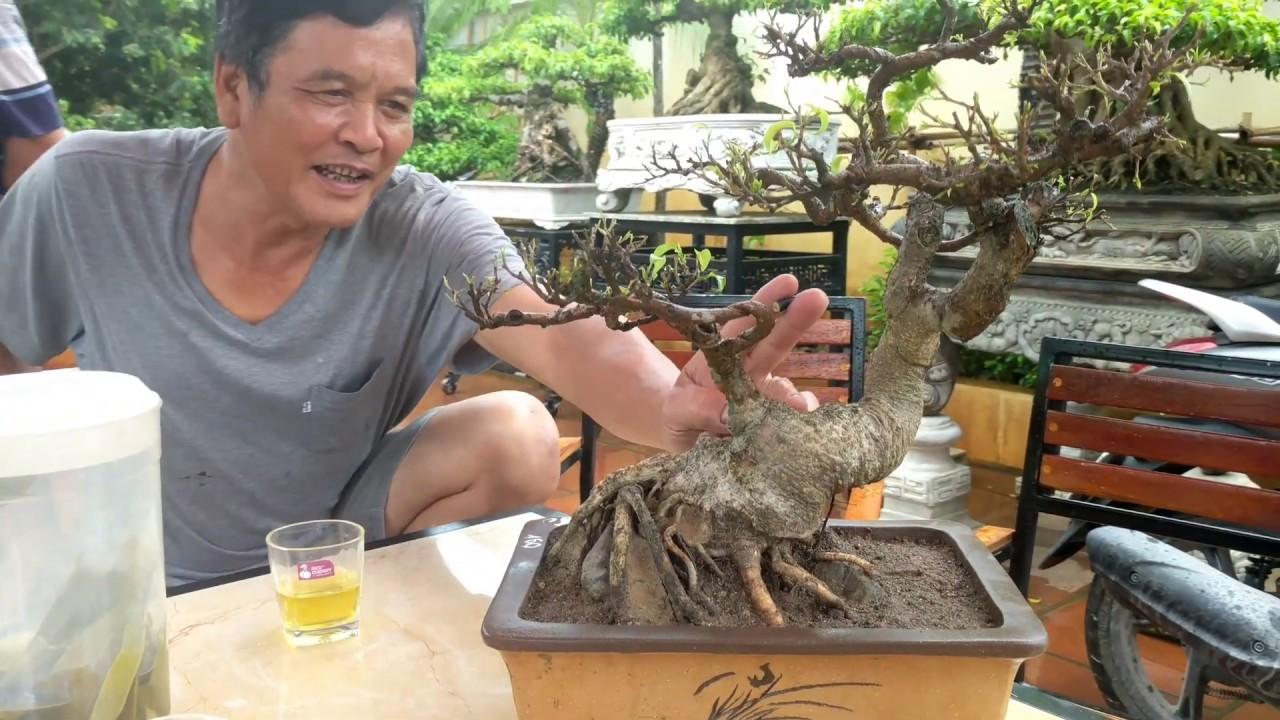 Bán 2 triệu 2 tháng sau chuộc về 2.5 triệu ngay giữa cơn bão số 3 tại Nga Sơn - T.Hóa.