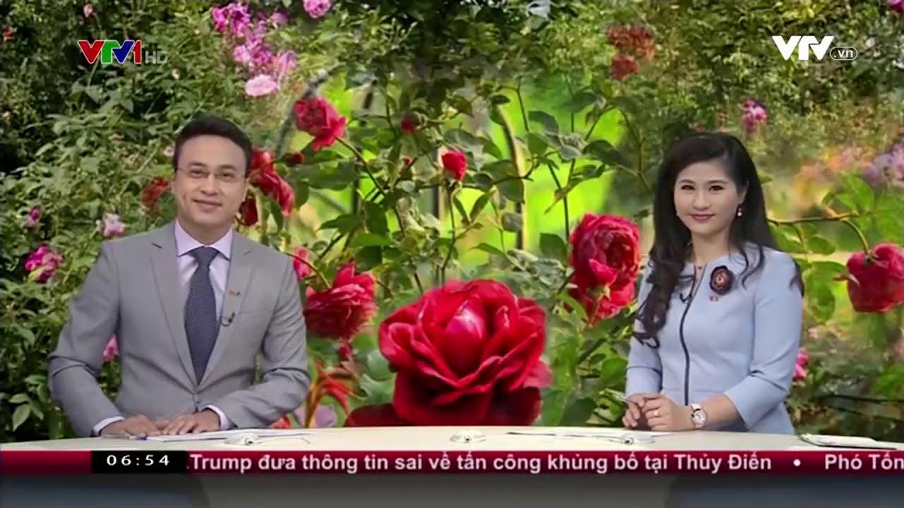 Chào buổi sáng VTV1 - Phạm Thiên Trang và hành trình bảo tồn hoa hồng cổ