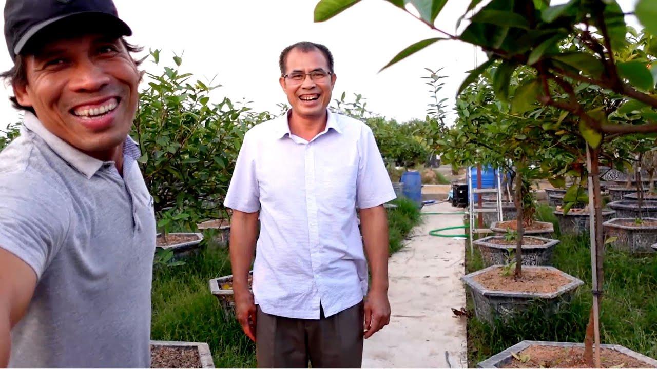 Thăm lại vườn mẫu đơn của ông Vua Việt Nam phát hiện điều bất ngờ (liên hệ 0912370266)