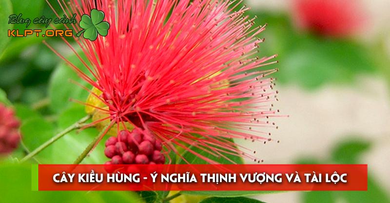 cay-kieu-hung-y-nghia-thinh-vuong-va-tai-loc