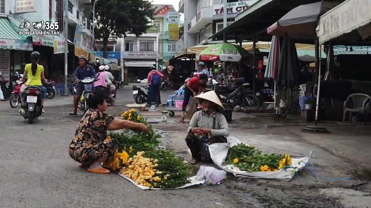 Can tho vietnam 2021 - CHỢ THỐT NỐT CẦN THƠ 2021 - cần thơ 365 market
