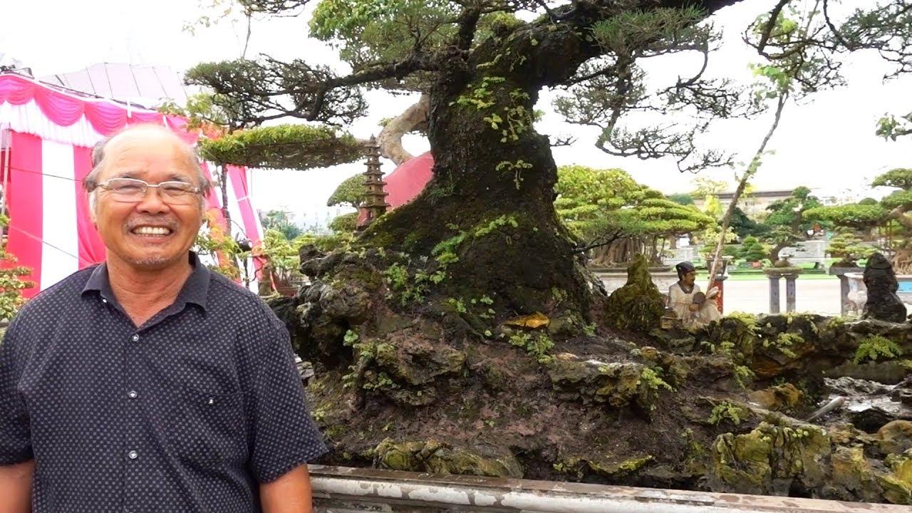 Chưa thấy ai yêu cây như ông này, cây lạ nhất triển lãm - strange shape bonsai at bonsai exhibition