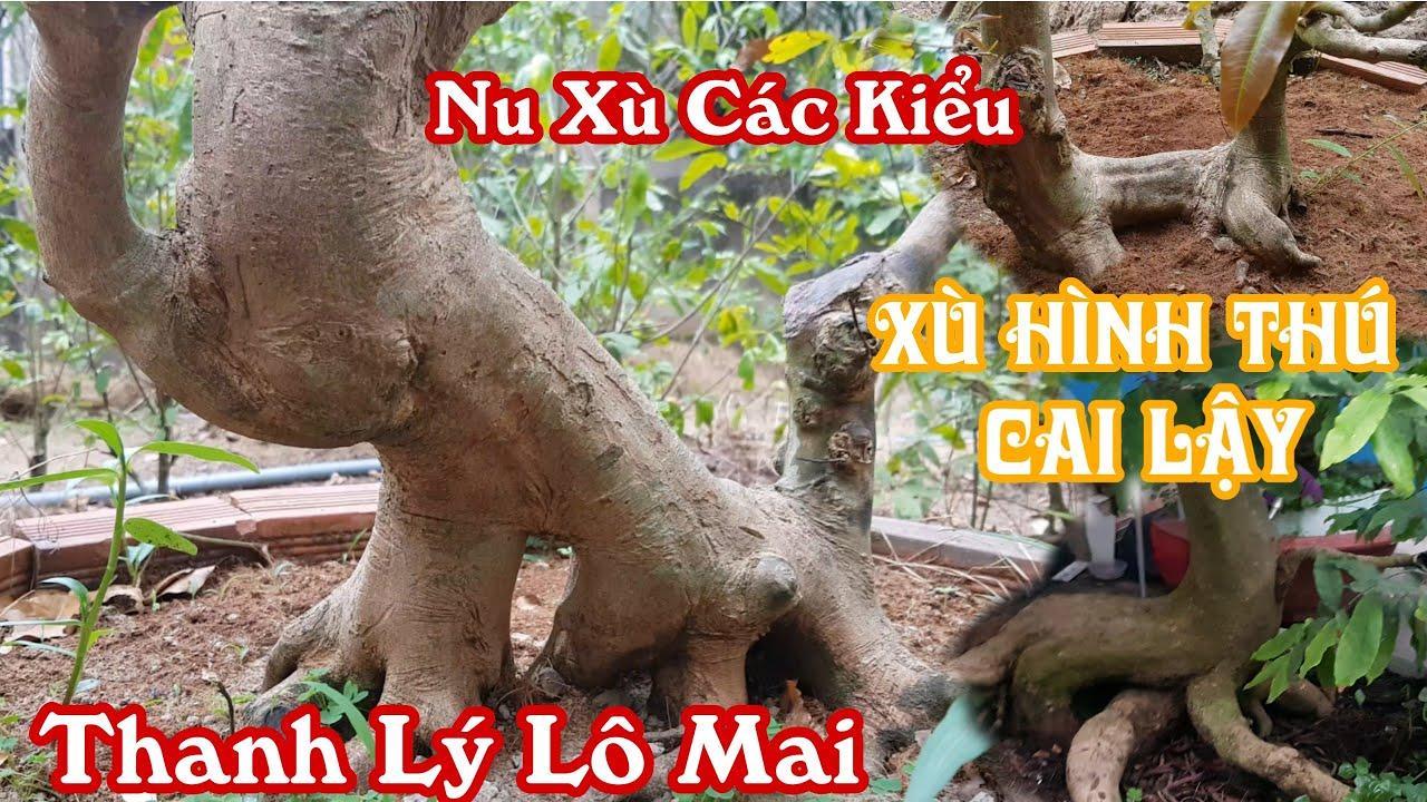 """Lô mai """"xù nu"""" hình thú siêu đẹp của anh Thái ở Cai Lậy 0982232991"""