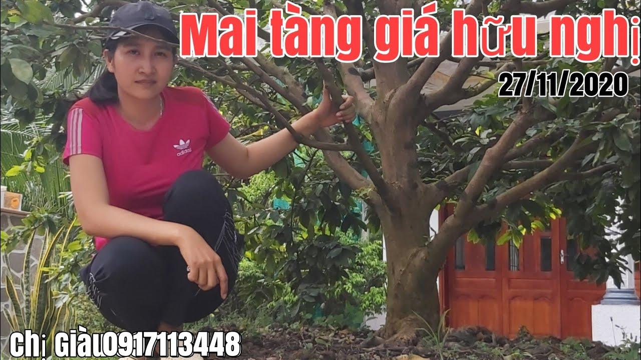 Mai tàng tàng thông một cốt giá hữu nghị gặp Chị Giàu 0917113448 Đồng Tháp