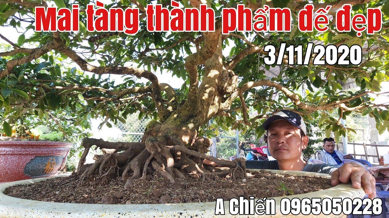 Mai thành phẩm bông dảo, đế đẹp gặp A Chiến 0965050228 huyện Châu Phú AG