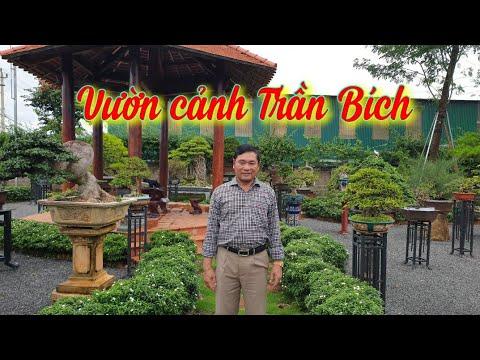 SH.4389. Thăm vườn cảnh đặc biệt Trần Bích tp Buôn Ma Thuột tỉnh Đắk Lắk.