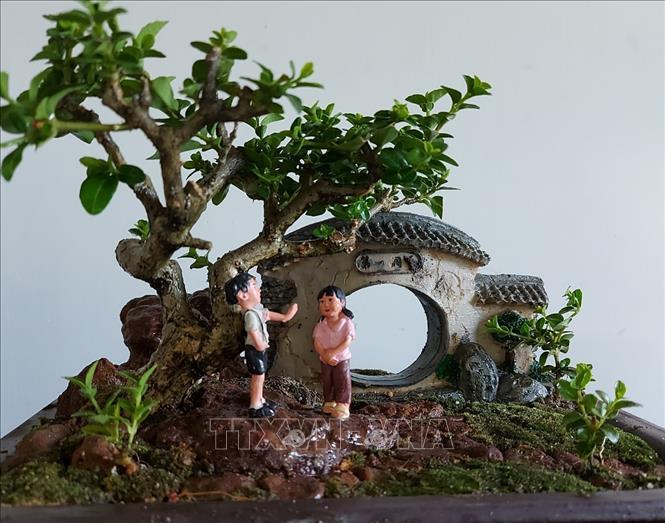 ky-luc-gia-the-gioi-ve-bonsai-mini-thoi-hon-vao-thien-nhien-2