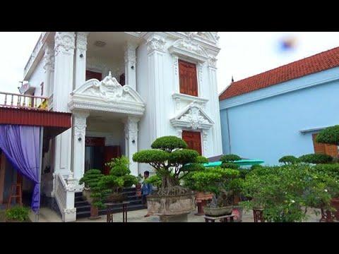 Vườn cây sanh cổ nhà anh Hùng Thái Bình
