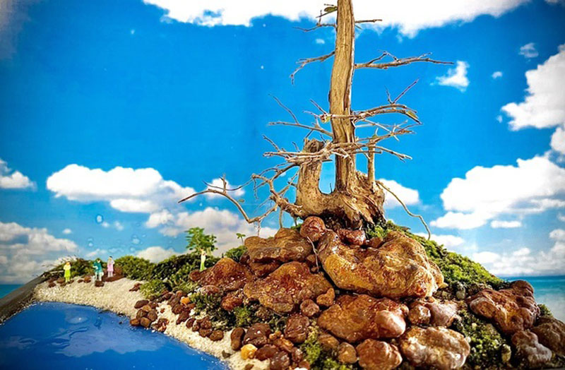 nguoi-dan-ong-nha-trang-so-huu-hang-nghin-bonsai-tieu-canh-mini-3