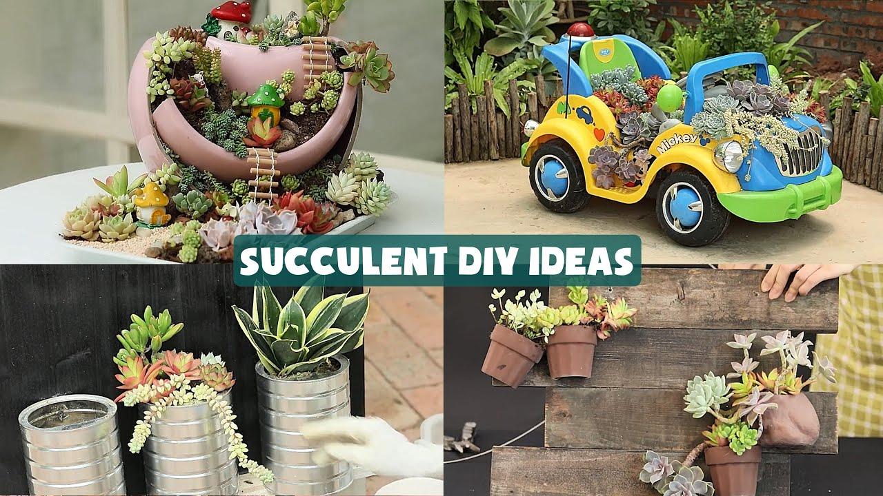 19 Succulent DIY Ideas| 19 Ý tưởng trang trí sen đá tuyệt đẹp| 多肉植物| 다육이들 | Suculentas