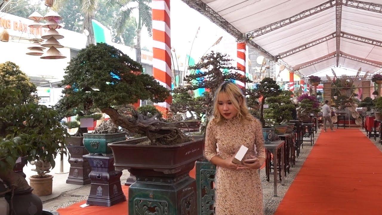 Dàn Bonsai quá đẹp, con gái Việt xinh như gái Tây. Very beautiful bonsai
