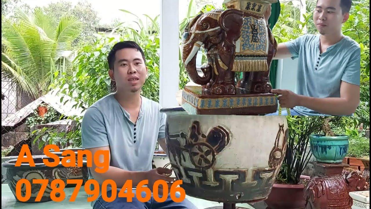 Giao lưu lô chậu 1cập voi Biên Hòa xưa gặp A sang 0787904606 cần Thơ.