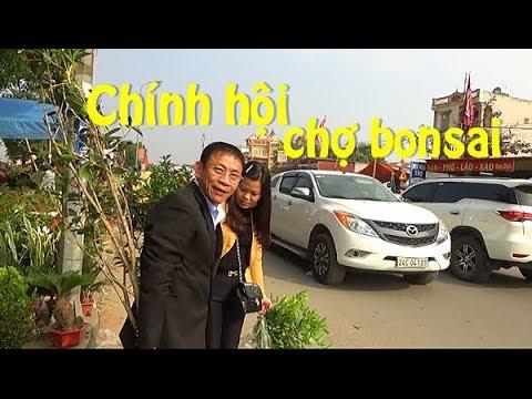 Giống nhà báo Lại Văn Sâm/Chính hội chợ Viềng - người mua cây đông nghịt