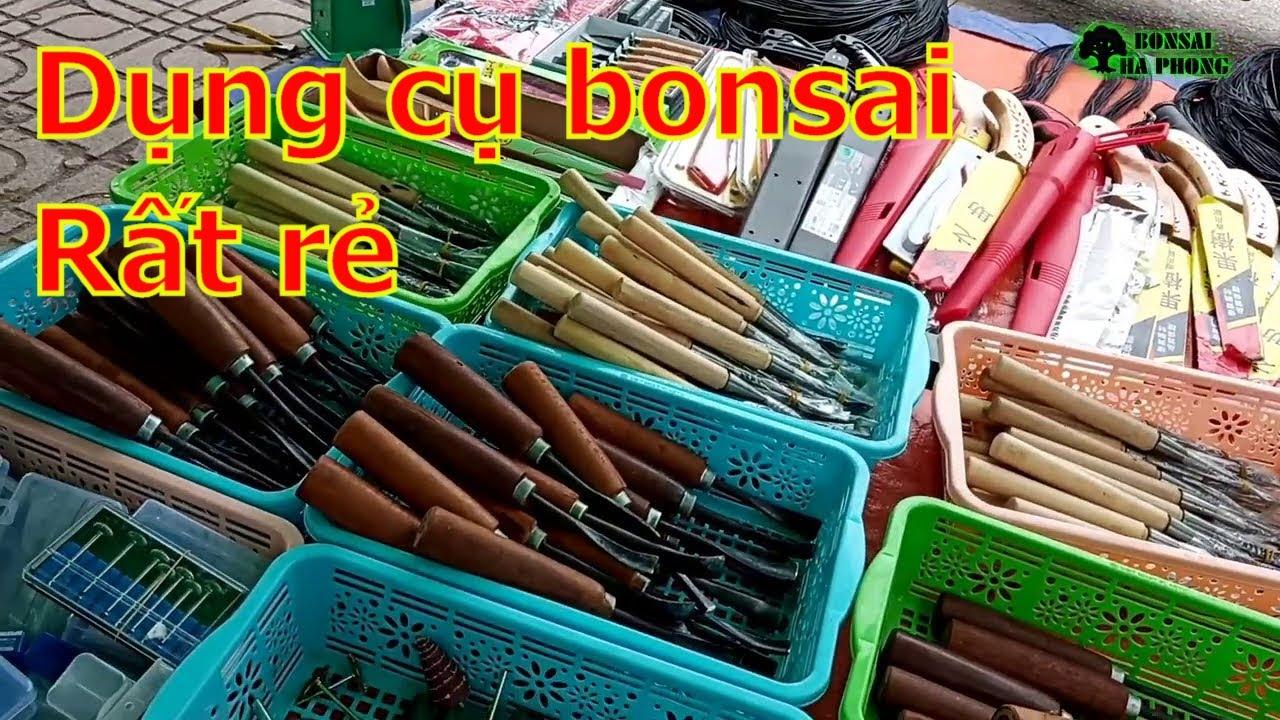 ✅Hỏi giá cây cảnh và dụng cụ bonsai khu thương mại Bắc Ninh✔️BShp